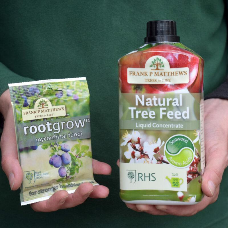 Tree Care Essentials