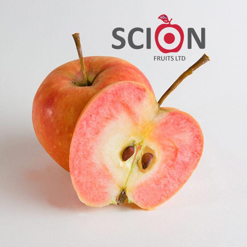 Scion Fruits