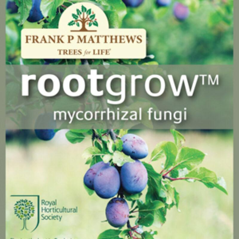 New rootgrow™ fertiliser just for trees!