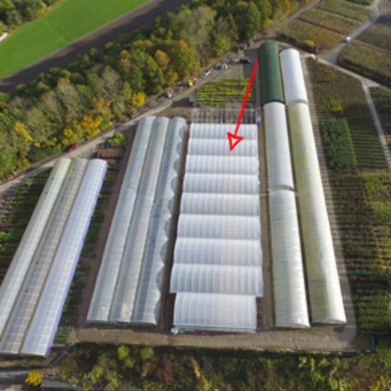 New 2500 sqm Keder Greenhouse Installed