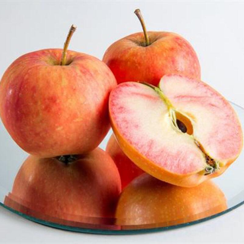 'Sunburst' apples to be commercially grown in UK 2