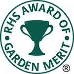 See RHS Award of Garden Merit (AGM) plant, fruit & veg award winners / RHS  Gardening
